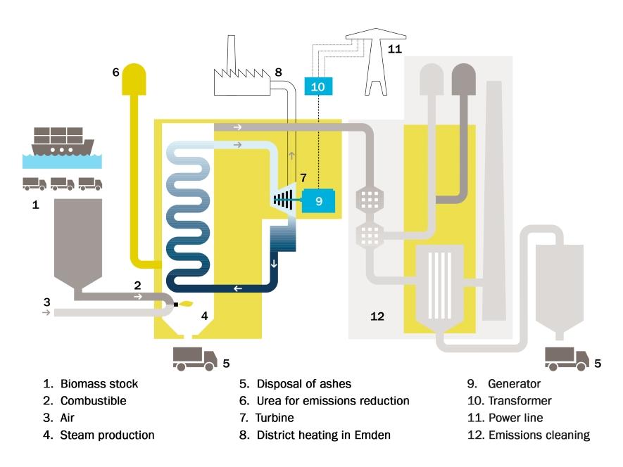 Biomass | Statkraft