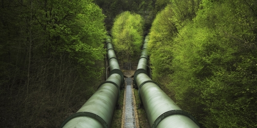 Pipelines in forest