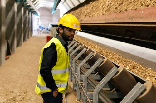 wood chip factory