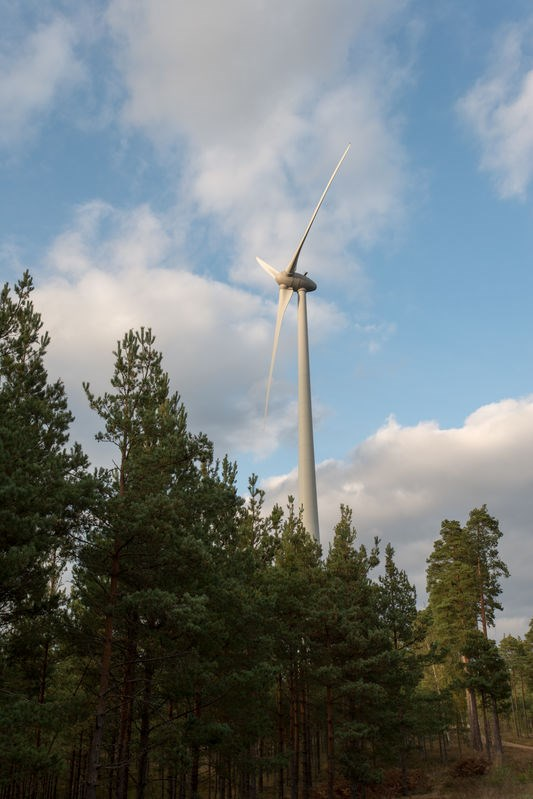 Picture of wind mill