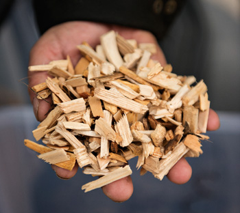 Hand full of wood chips
